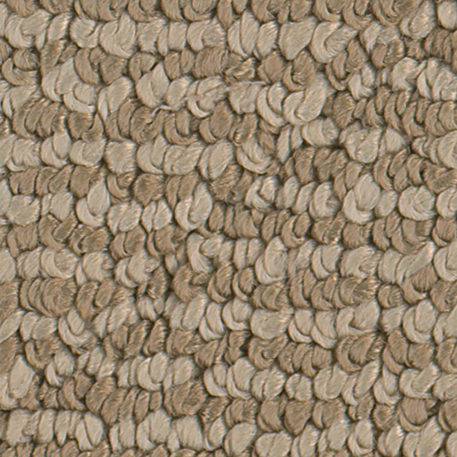 STAINMASTER Active Family Canoe Natural Carpet Sample