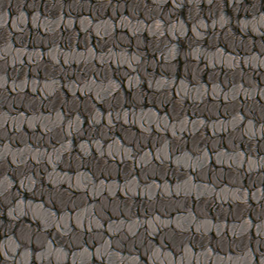 STAINMASTER Active Family Canoe Fragrant Cloves Carpet Sample