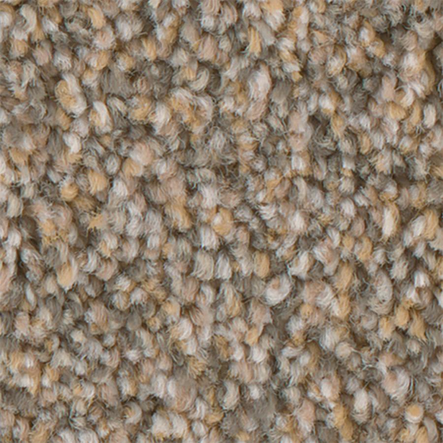 STAINMASTER PetProtect Mineral Bay I 12-FT Sun Kissed Carpet Sample