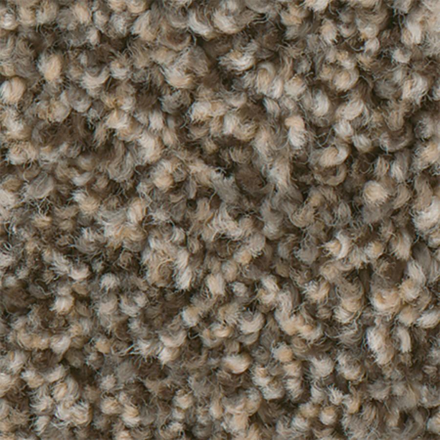 STAINMASTER PetProtect Mineral Bay I 12-FT Cabana Carpet Sample