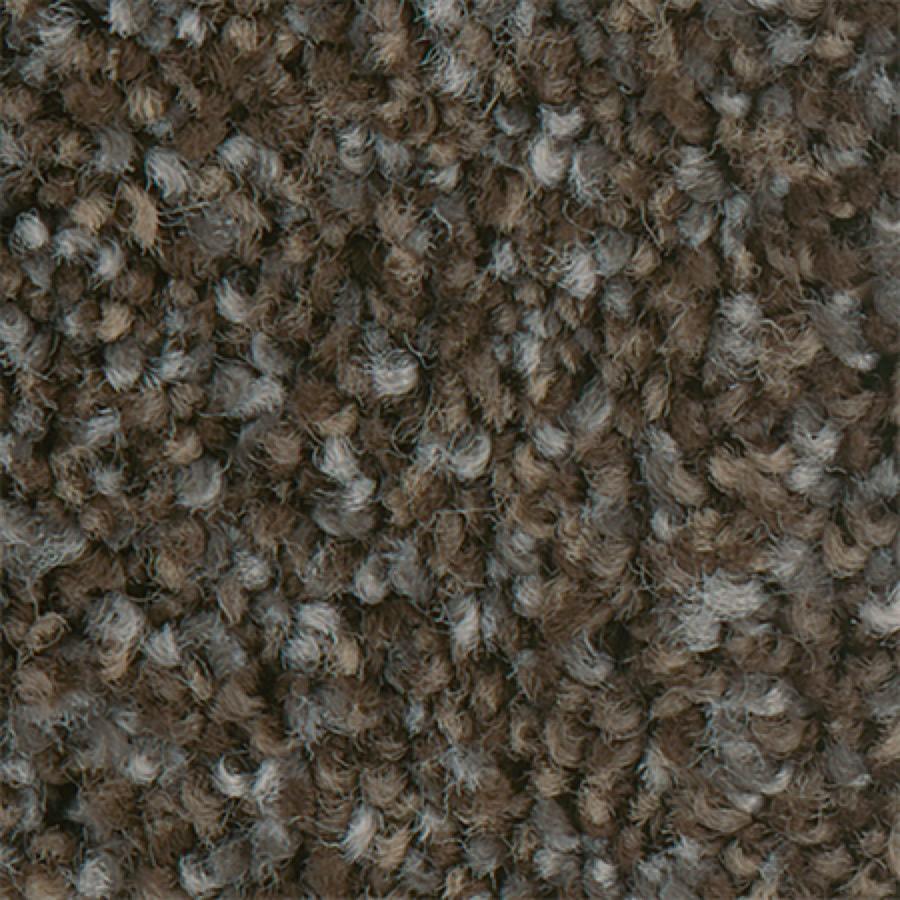 STAINMASTER PetProtect Mineral Bay I 12-FT Dockside Carpet Sample