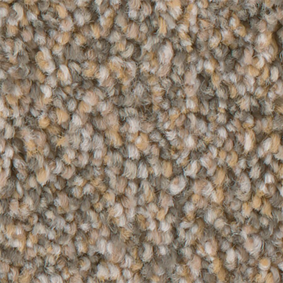 STAINMASTER PetProtect Mineral Bay II 12-FT Sun Kissed Carpet Sample