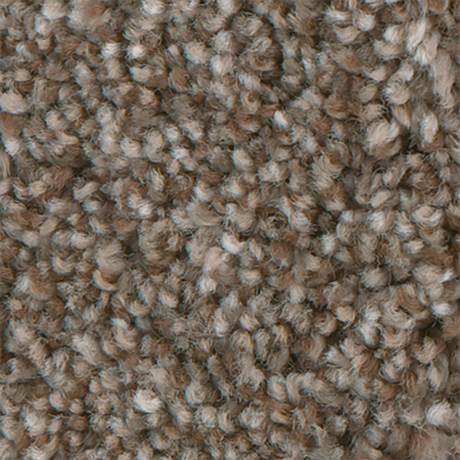 STAINMASTER PetProtect Mineral Bay II 12-FT Inlet Carpet Sample