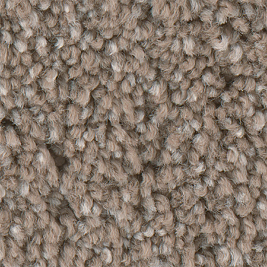 STAINMASTER PetProtect Foundry I 12-FT Stucco Glaze Carpet Sample