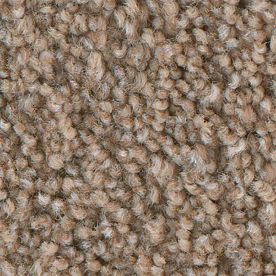 STAINMASTER PetProtect Foundry I 12-FT Classic Sand Carpet Sample