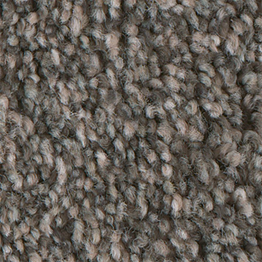 Stainmaster Petprotect Foundry I Mineral Carpet Sample At