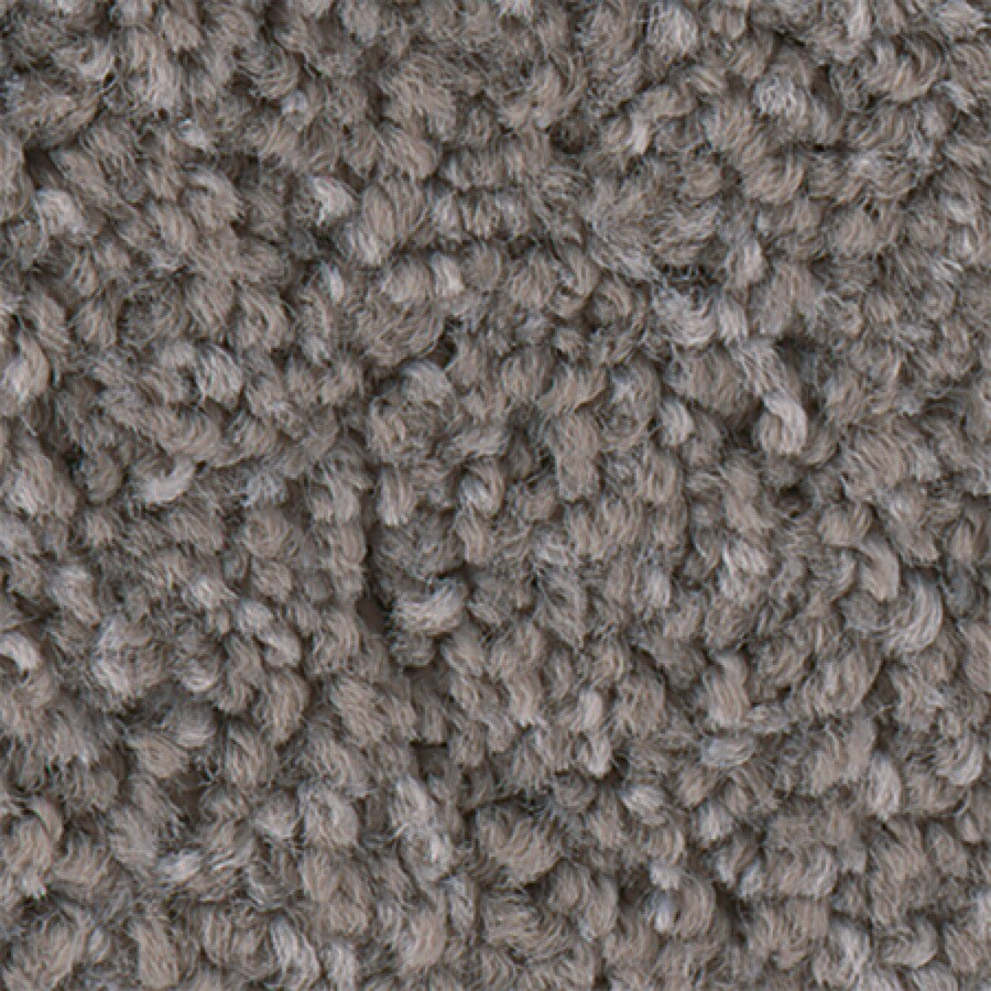 STAINMASTER PetProtect Foundry I 12-FT Vapor Carpet Sample
