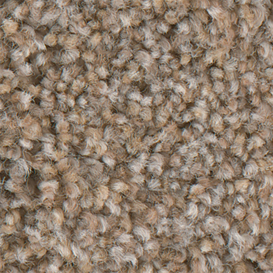 STAINMASTER PetProtect Foundry II 12-FT Blissful Carpet Sample