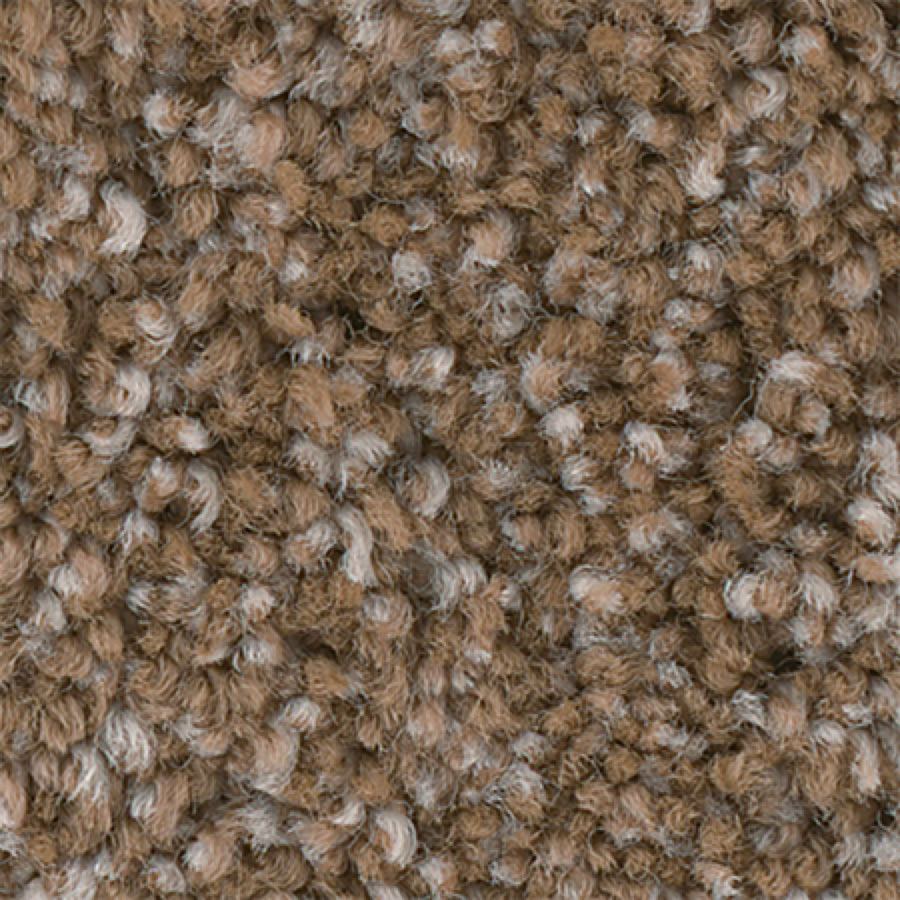 STAINMASTER PetProtect Foundry II 12-FT Toast Carpet Sample