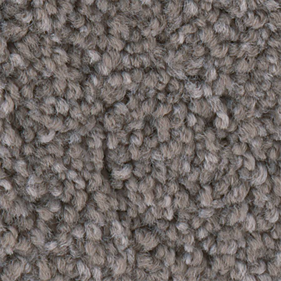 STAINMASTER PetProtect Foundry II 12-FT Vapor Carpet Sample