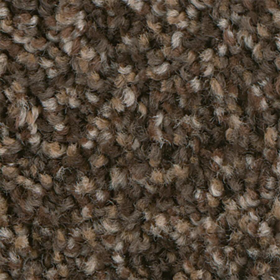 STAINMASTER PetProtect Foundry II 12-FT Sandalwood Carpet Sample
