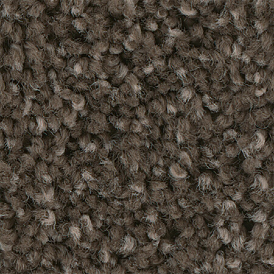 STAINMASTER PetProtect Foundry II 12-FT Garden Soil Carpet Sample