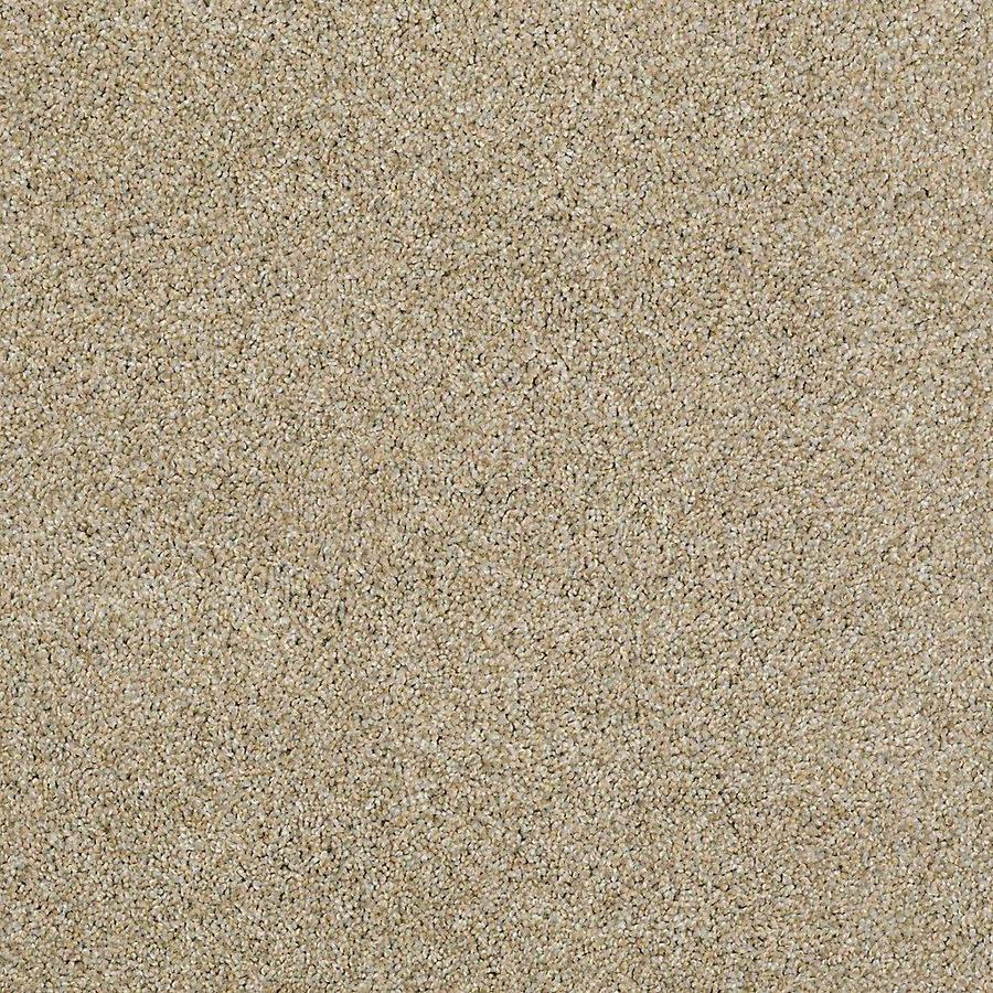 STAINMASTER PetProtect Shameless I Sahara Carpet Sample