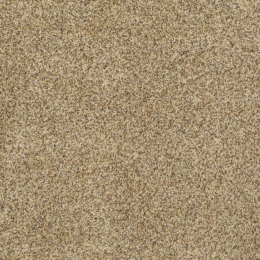 STAINMASTER PetProtect Shameless I Orinoco Carpet Sample
