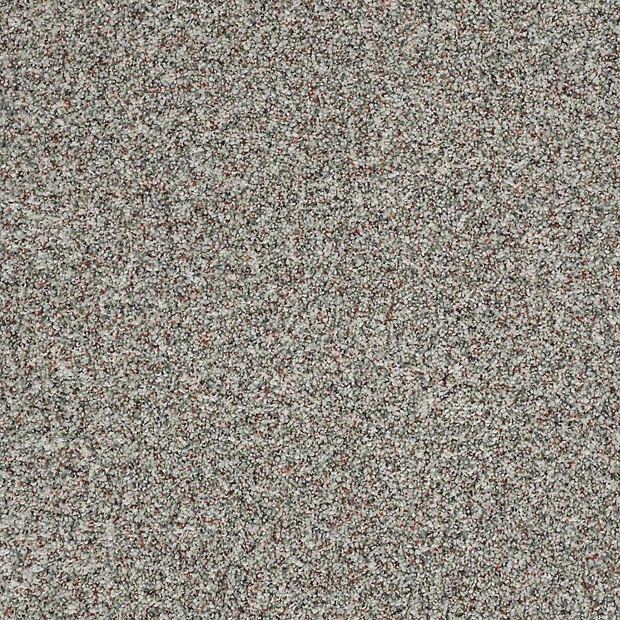 STAINMASTER PetProtect Shameless I Grand Canyon Carpet Sample