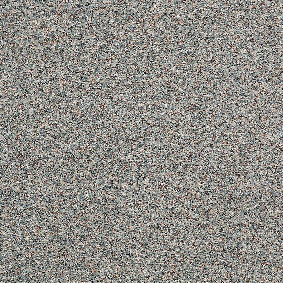 STAINMASTER PetProtect Shameless I Emerald Bay Carpet Sample
