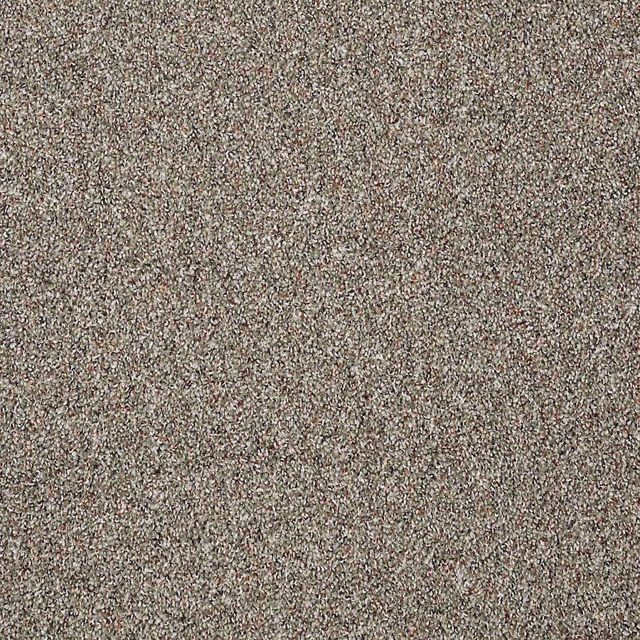 STAINMASTER PetProtect Shameless I Fossil Carpet Sample