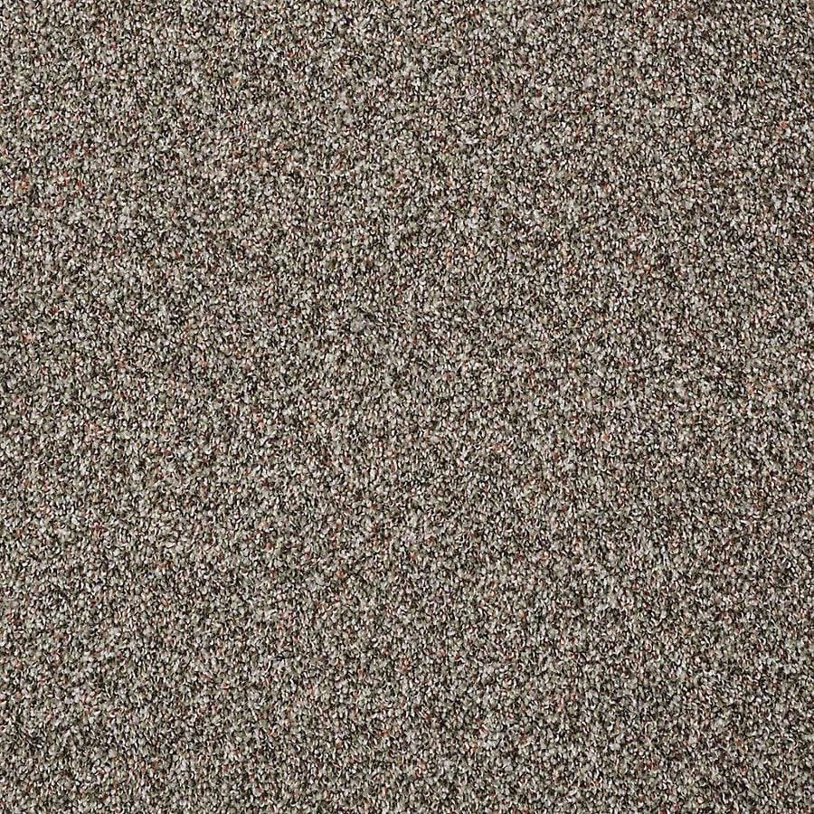 STAINMASTER PetProtect Shameless I Velvet Night Carpet Sample