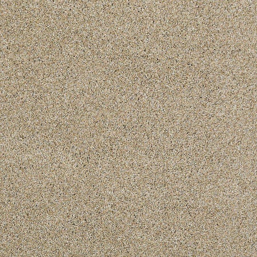 STAINMASTER PetProtect Shameless II Sahara Carpet Sample