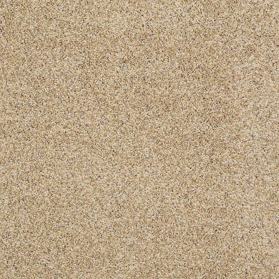 STAINMASTER PetProtect Shameless II Raffia Carpet Sample