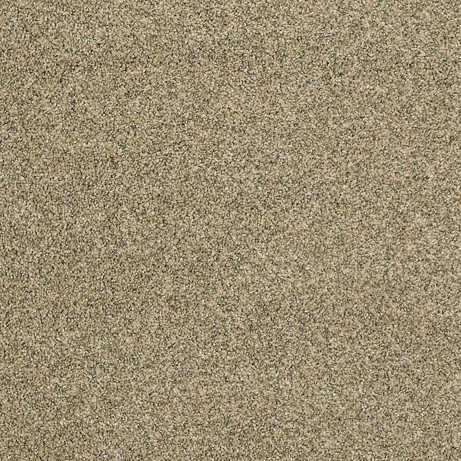 STAINMASTER PetProtect Shameless II Oyster Shell Carpet Sample