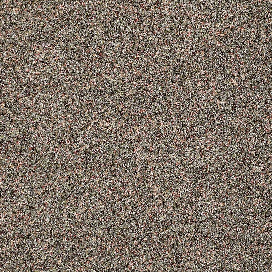 STAINMASTER PetProtect Shameless II Timberline Carpet Sample