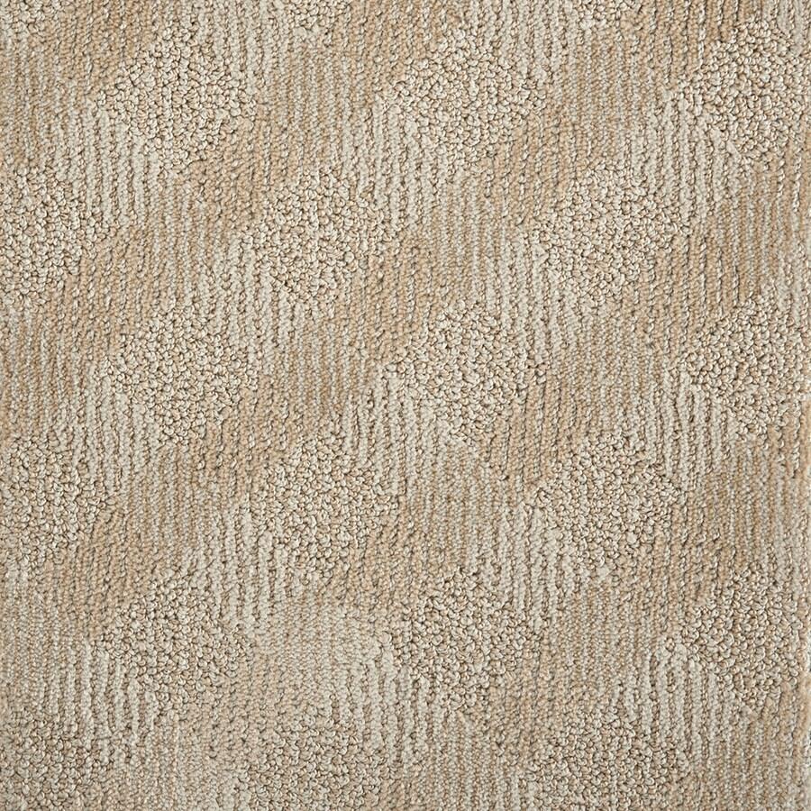 STAINMASTER PetProtect Crossing Clay Carpet Sample