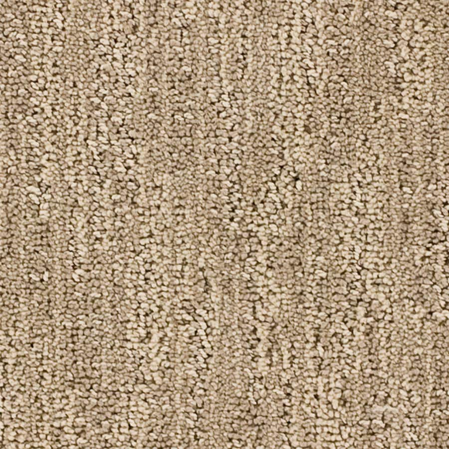 STAINMASTER Essentials Imagination Serenity Carpet Sample