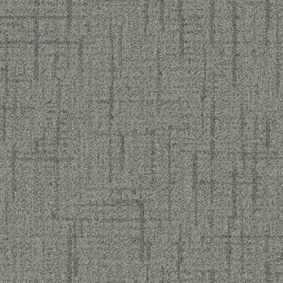 STAINMASTER Essentials Stature Granite Carpet Sample