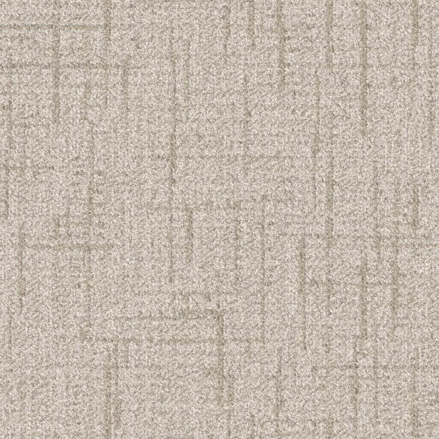 STAINMASTER Essentials Stature Haylo Carpet Sample