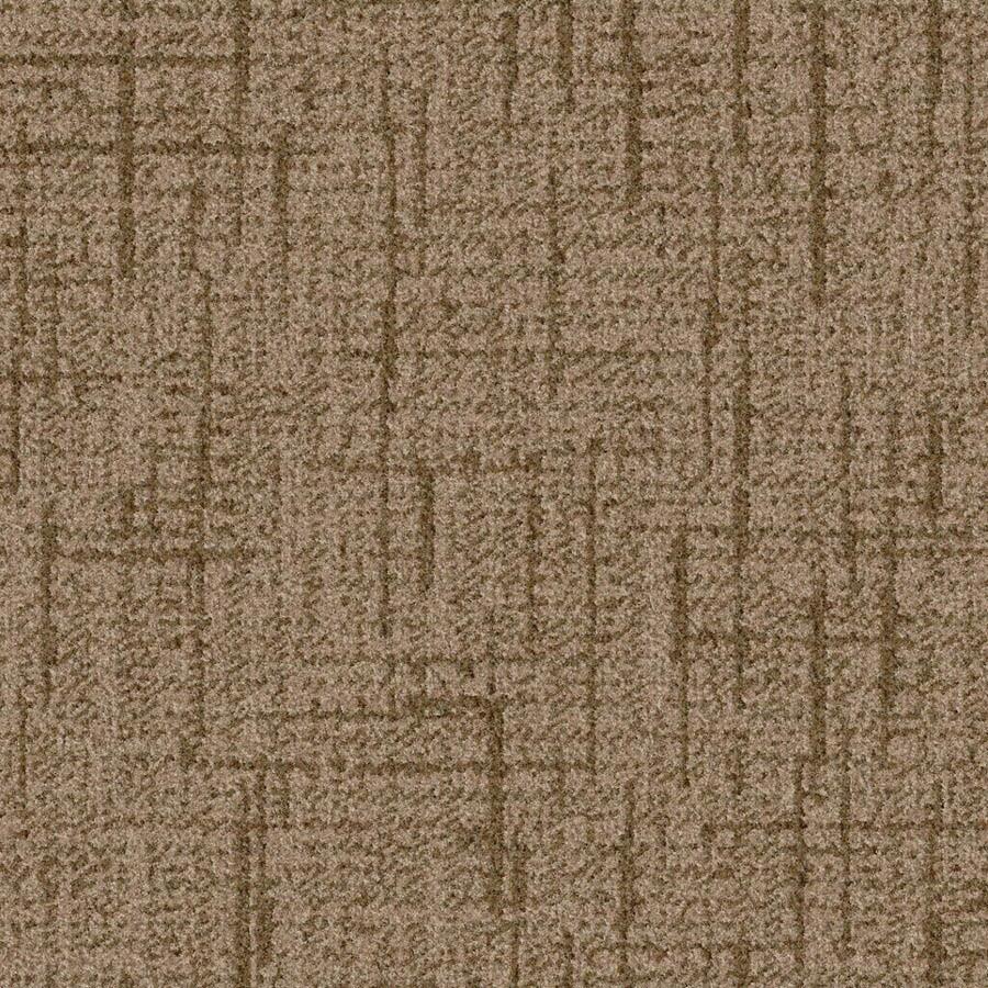 STAINMASTER Essentials Stature Warm Cider Carpet Sample