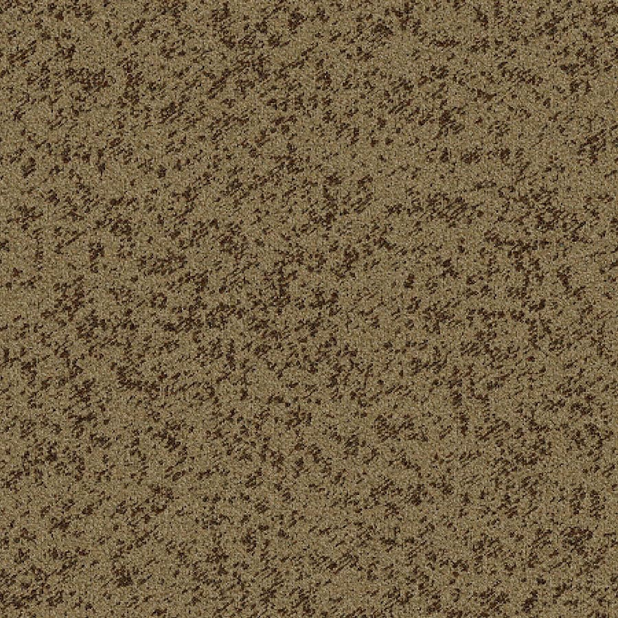 Shop stainmaster essentials focal point hot fudge carpet for Focal point flooring