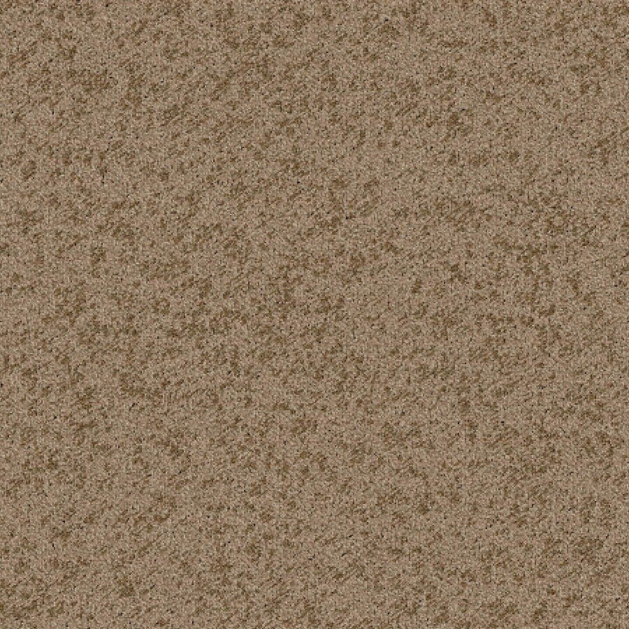 STAINMASTER Essentials Focal Point Warm Cider Carpet Sample