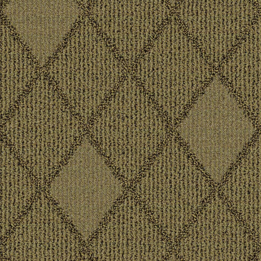 STAINMASTER Essentials Insignia Driftscape Carpet Sample