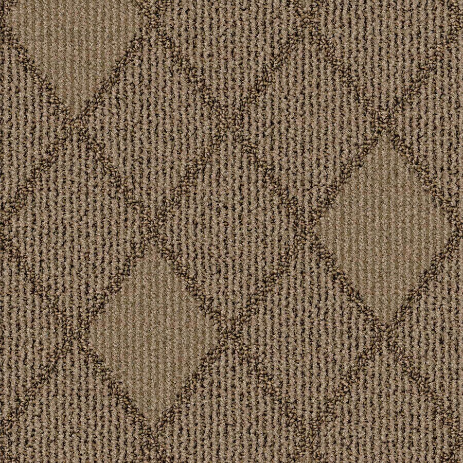 STAINMASTER Essentials Insignia Warm Cider Carpet Sample
