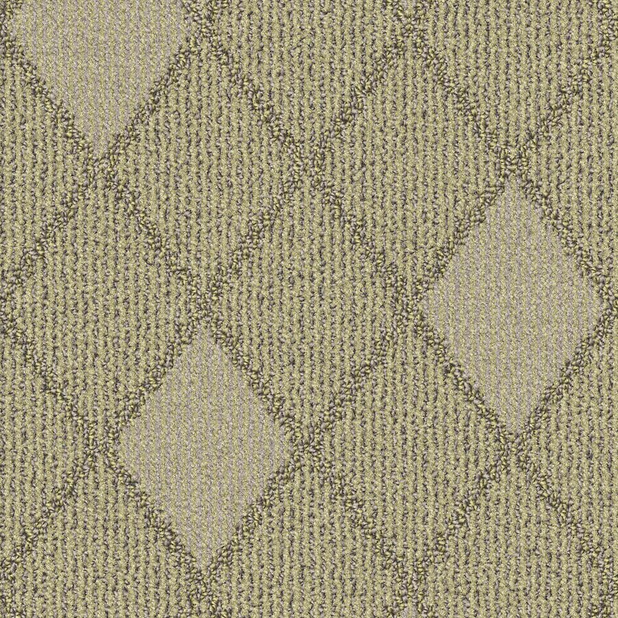 STAINMASTER Essentials Insignia Oats Carpet Sample
