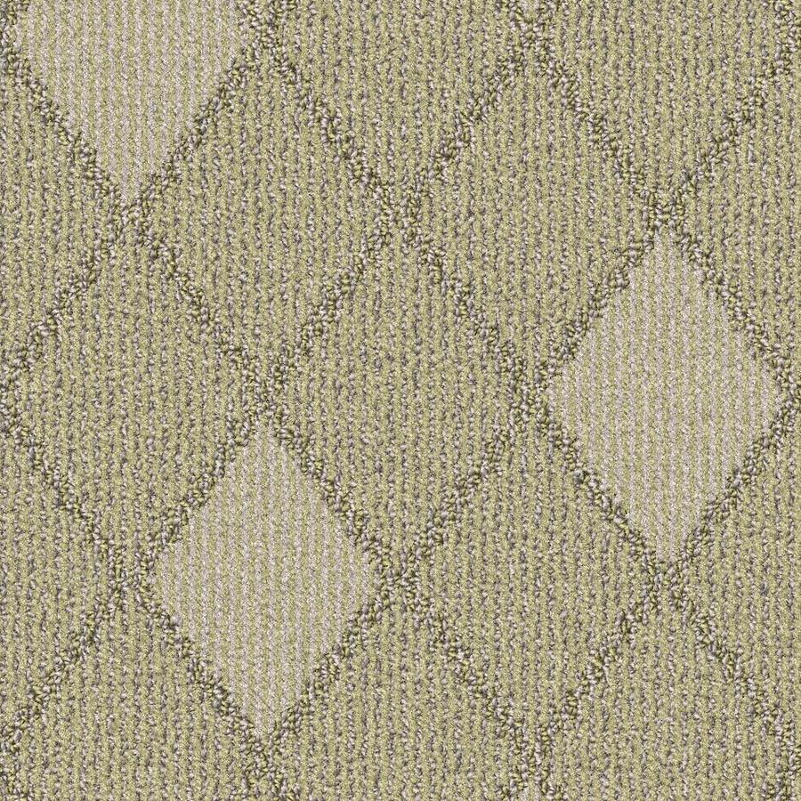 STAINMASTER Essentials Insignia Cashmere Carpet Sample