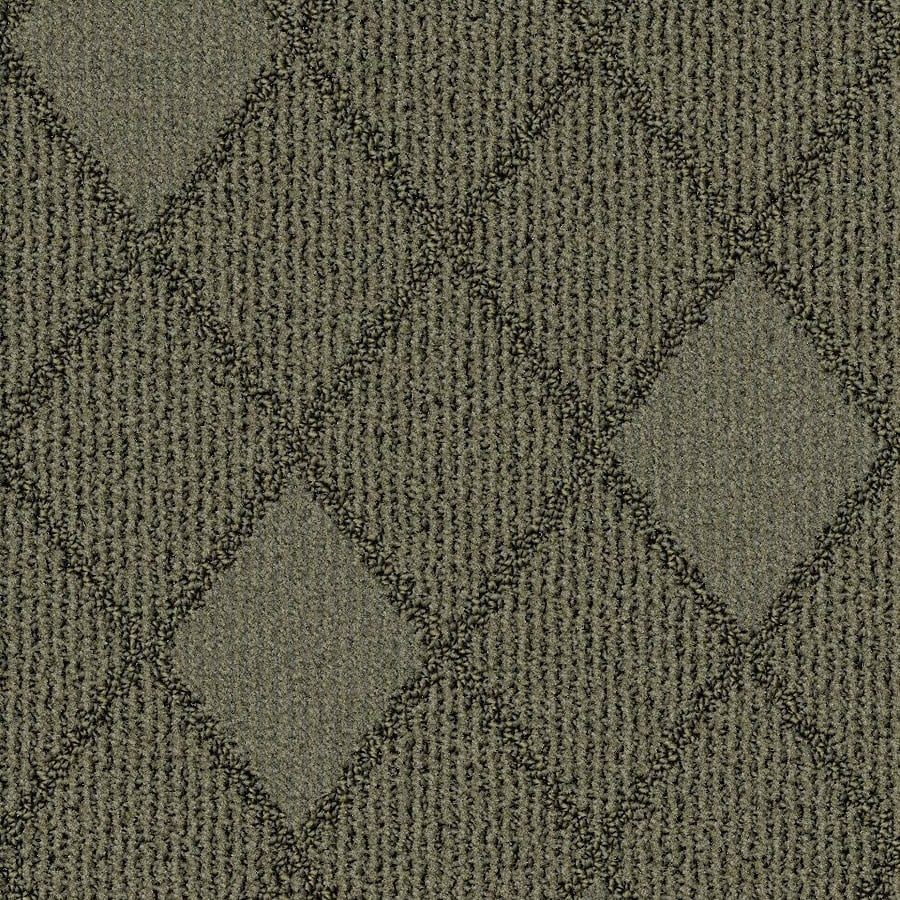 STAINMASTER Essentials Insignia Tranquility Carpet Sample