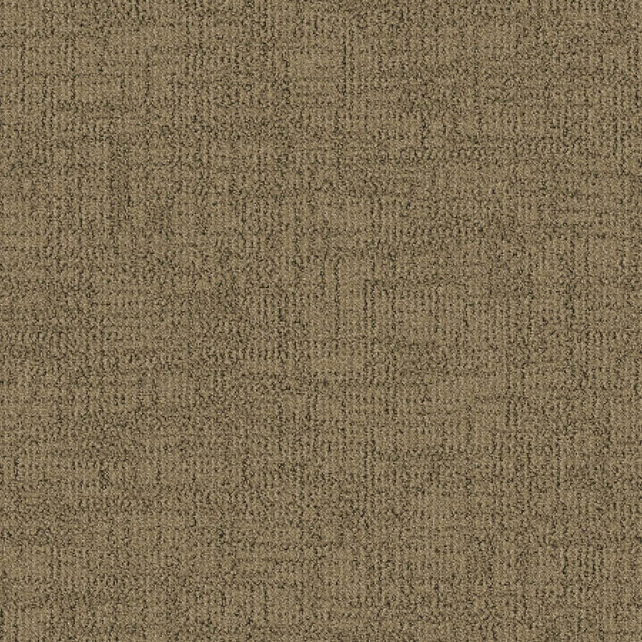 STAINMASTER Essentials Ames Driftscape Carpet Sample