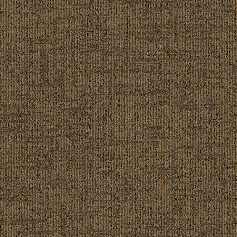 STAINMASTER Essentials Ames Warm Cider Carpet Sample