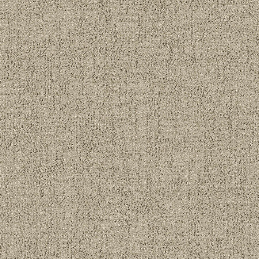 STAINMASTER Essentials Ames Oats Carpet Sample