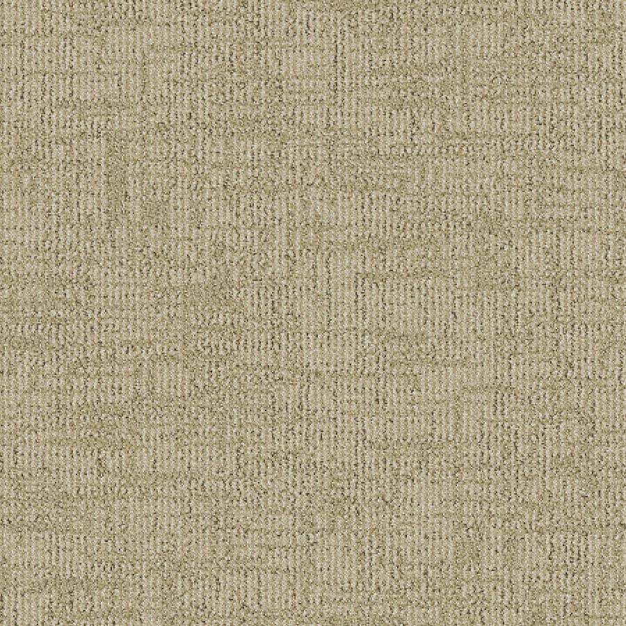 STAINMASTER Essentials Ames Haylo Carpet Sample
