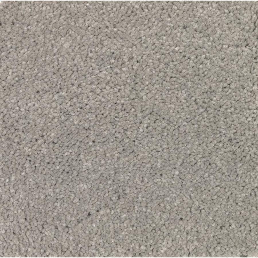 STAINMASTER Essentials Decor Flair Stellar Plush Carpet Sample