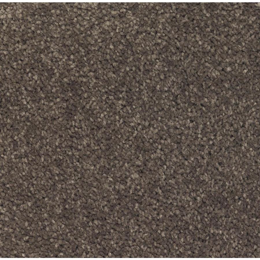 STAINMASTER Essentials Decor Flair Swiss Chocolate Plush Carpet Sample
