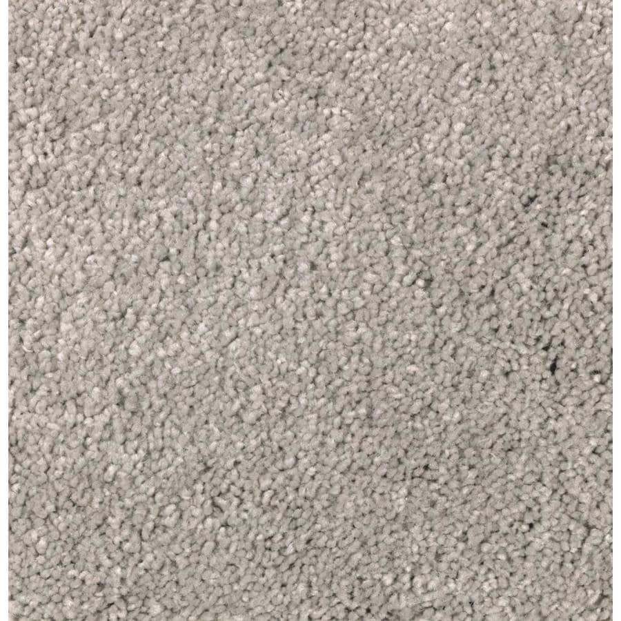 STAINMASTER Essentials Decor Fashion Stellar Plush Carpet Sample