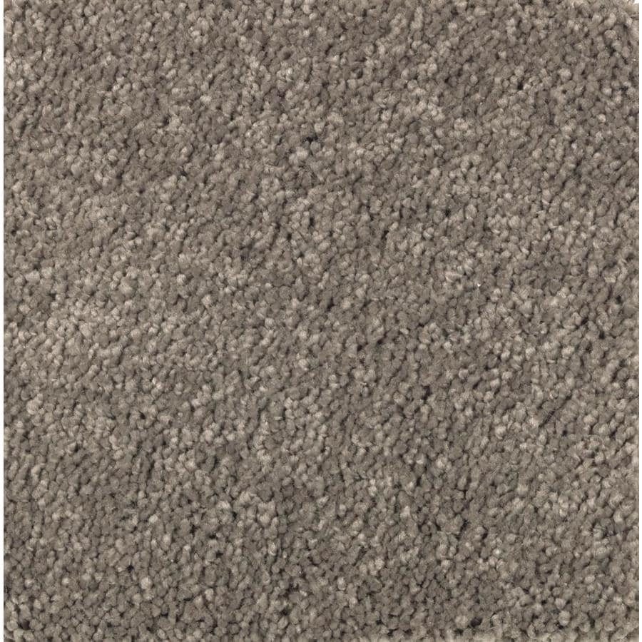 STAINMASTER Essentials Decor Fashion Perfect Taupe Plush Carpet Sample