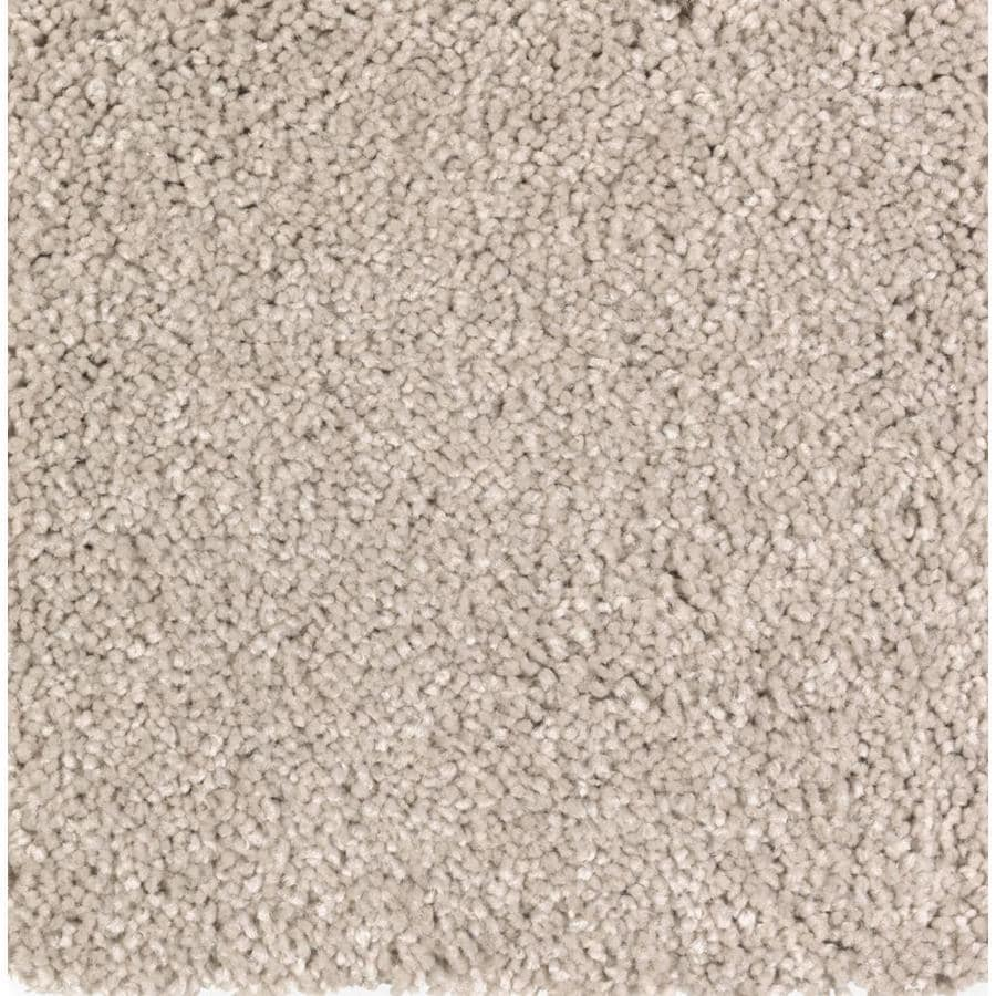 STAINMASTER Essentials Decor Fashion Cream Soda Plush Carpet Sample