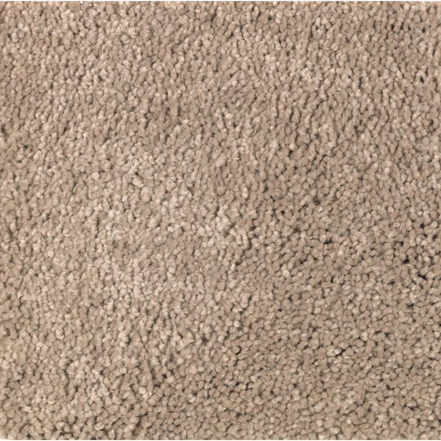 STAINMASTER Essentials Decor Fashion Cedar Chest Plush Carpet Sample