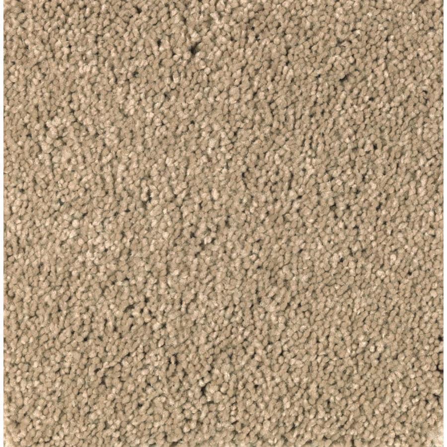 STAINMASTER Essentials Decor Fashion Amber Dawn Plush Carpet Sample