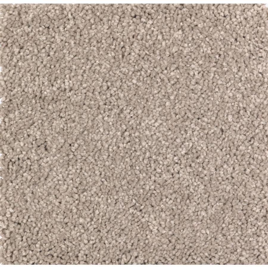 STAINMASTER Essentials Decor Fashion Tawny Tan Plush Carpet Sample
